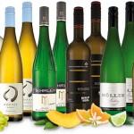 Best of Deutschland Weinpaket